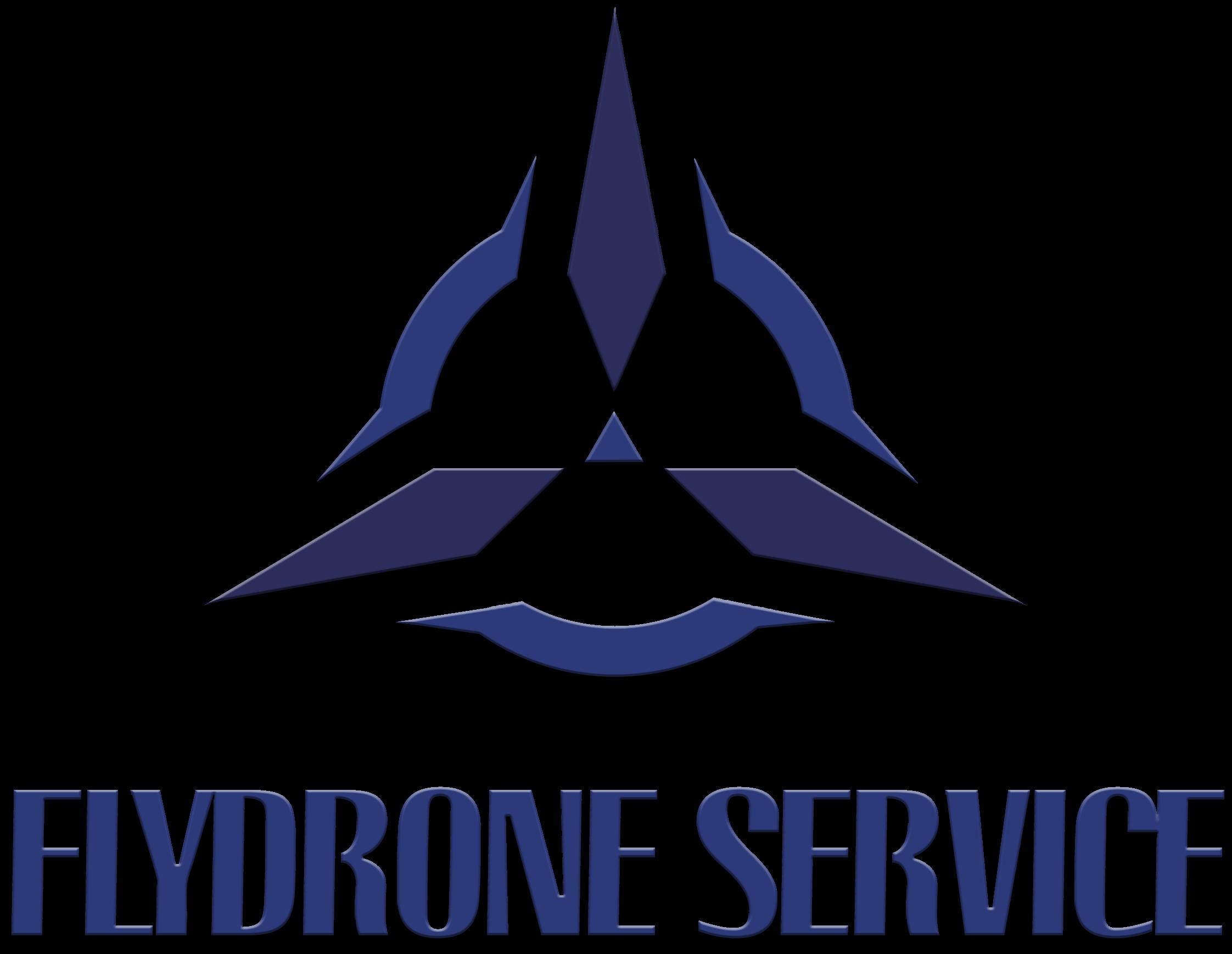 FlyDronService
